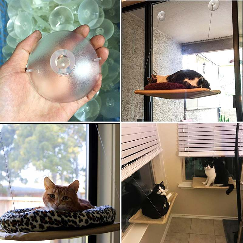 Plastic Cat Window Mounted Basking Bed Pet Shelf Kitten Perch Seat Hammock  Toy