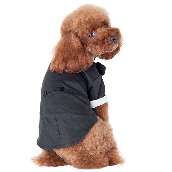 Pet Dogs Cat Prince Wedding Suit Tuxedo Bowk Tie Puppy Costumes S ...