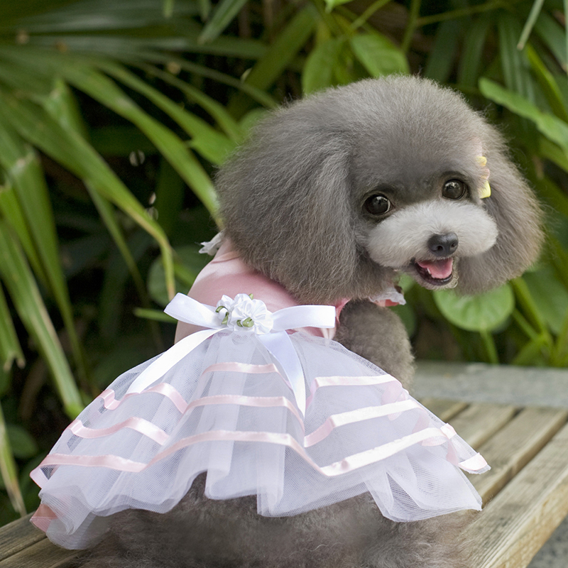 Small-Pet-Dog-Cats-Bow-Tutu-Dress-Lace-Skirt-Puppy-Dress-Summer-Princess-Clothes thumbnail 8