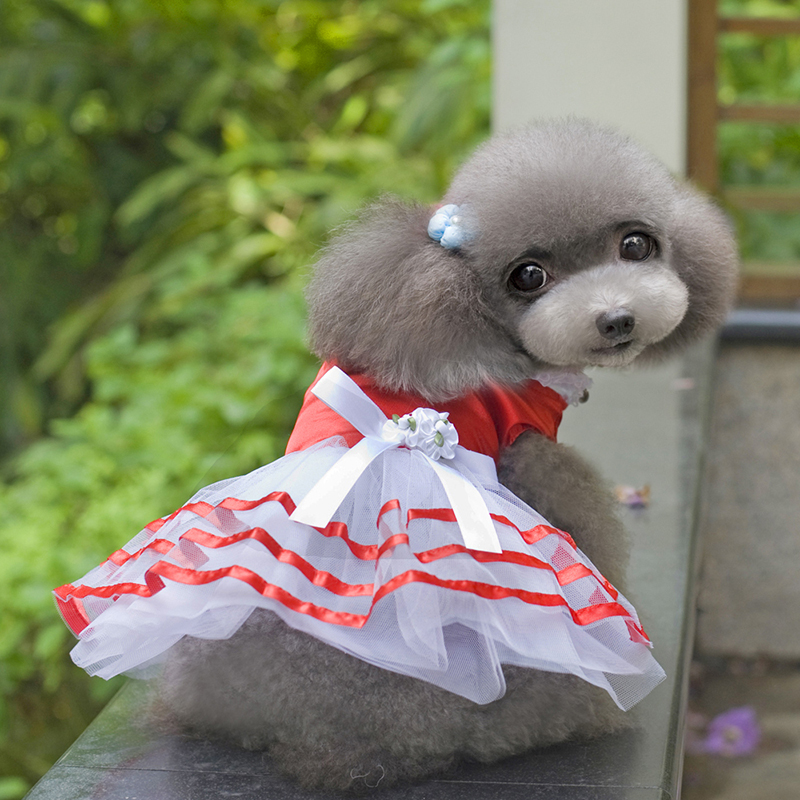 Small-Pet-Dog-Cats-Bow-Tutu-Dress-Lace-Skirt-Puppy-Dress-Summer-Princess-Clothes thumbnail 9