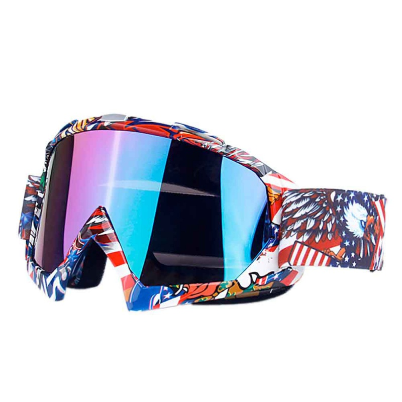 Snowboard-Ski-Goggles-Gear-Skiing-Men-Women-Glasses-Anti-fog-UV-Dual-Lens-US