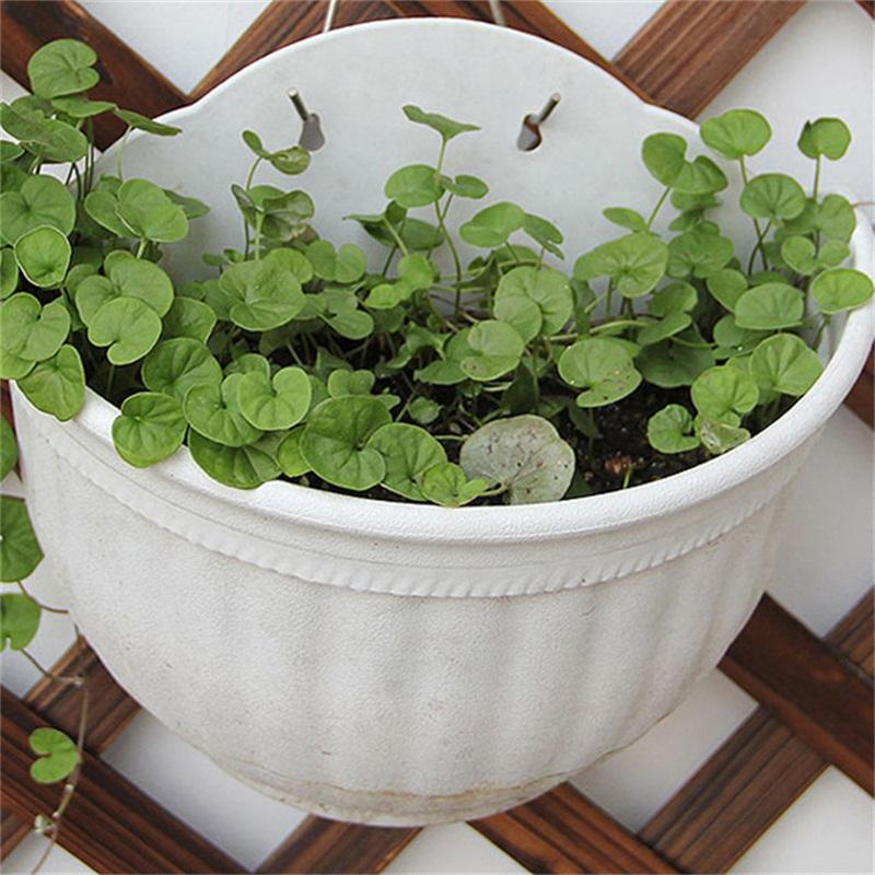 Wall Hanging Plastic Pots Storage Garden Basket Plant