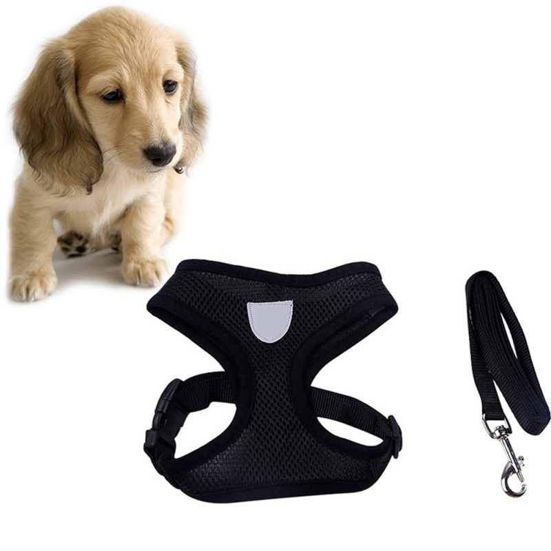 Small-Pet-Cat-Dog-Breathable-Mesh-Harness-and-Adjustable-Puppy-Vest-Leash-Set-US thumbnail 16