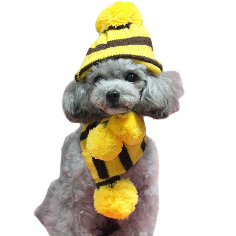 Winter-Pet-3-pcs-Stripe-Knitted-Pet-Dog-  sc 1 st  eBay & Winter Pet 3 pcs Stripe Knitted Pet Dog Hat+Scarf+Socks Puppy ...