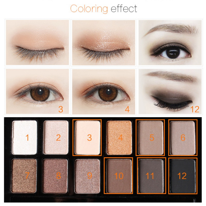 12 Colors Beauty Eye Shadow Palette Makeup Shimmer Eyeshadow Cosmetic Brush Set Cad 3 82