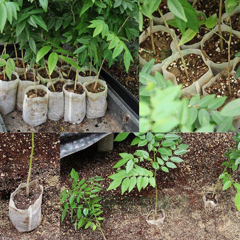 100pcs set pflanzsack maceta bolsa plant grow bag pflanzbeutel pot blument pfe eur 1 45. Black Bedroom Furniture Sets. Home Design Ideas