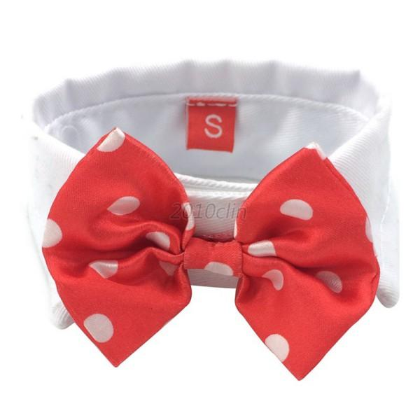 Best Necktie Bow Adorable Dog - LX0756RW  You Should Have_315882  .jpg