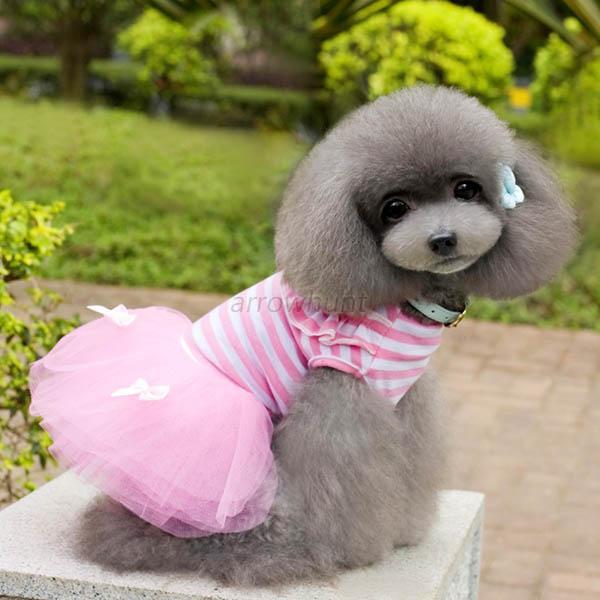 Small Dog Clothes Cute Pet Dog Puppy Tutu Dress Lace Skirt